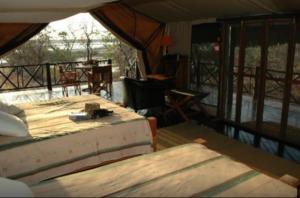 10 Days Zanzibar Beach & Selous Safari with optional Diving